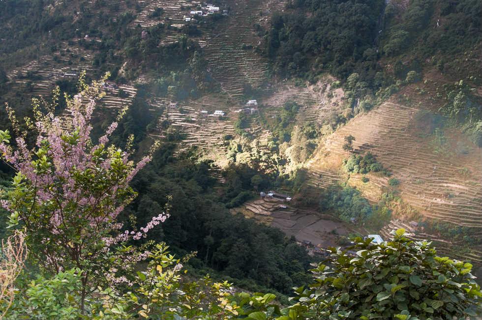 Sunlit Valley in Nepal